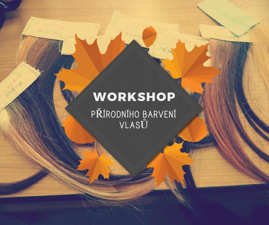 Cosm´etika Workshop Barvení vlasů Praha 9.1.2016