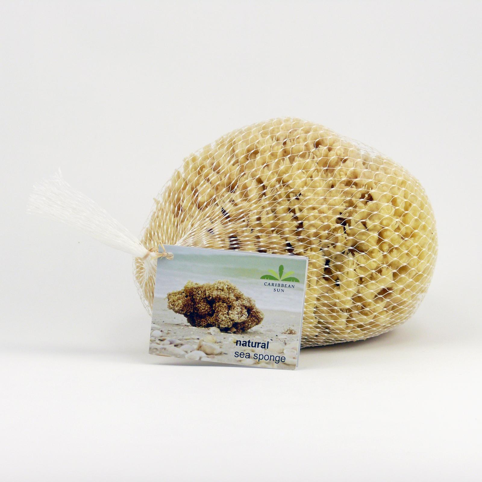 Caribbean Sun Mořská houba Wool, SWL 328 1 ks, 14-15 cm