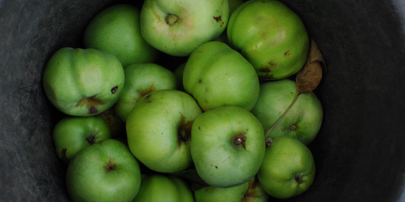 4 důvody, proč jíst jablka každý den