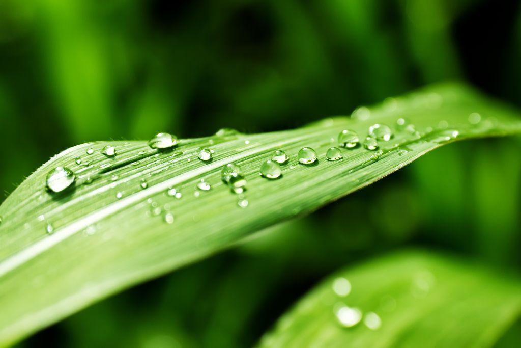 4 tajemství pro hydratovanou pleť