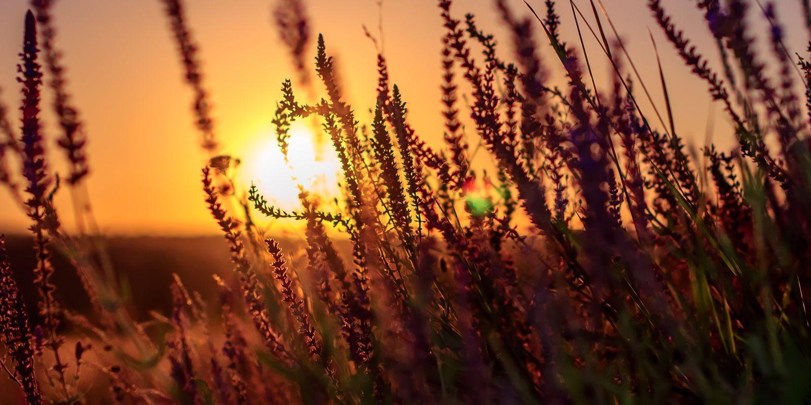 4 zásady do teplého počasí
