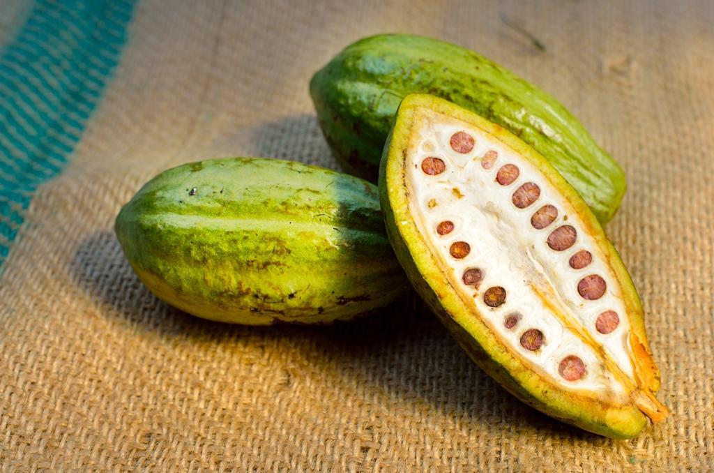Kakaové máslo pro antioxidanty