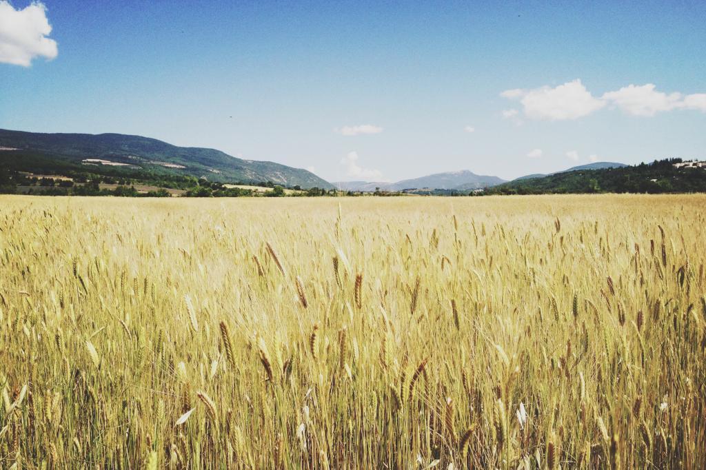 Biodynamické zemědělství