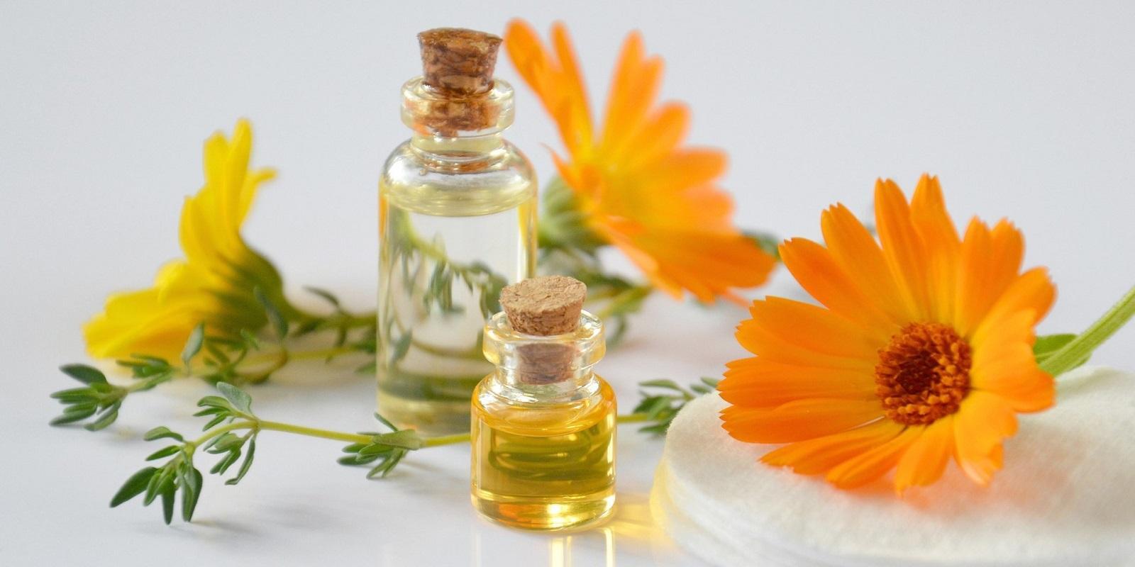 Calendula neboli měsíček podpoří vaši krásu i dobré zdraví