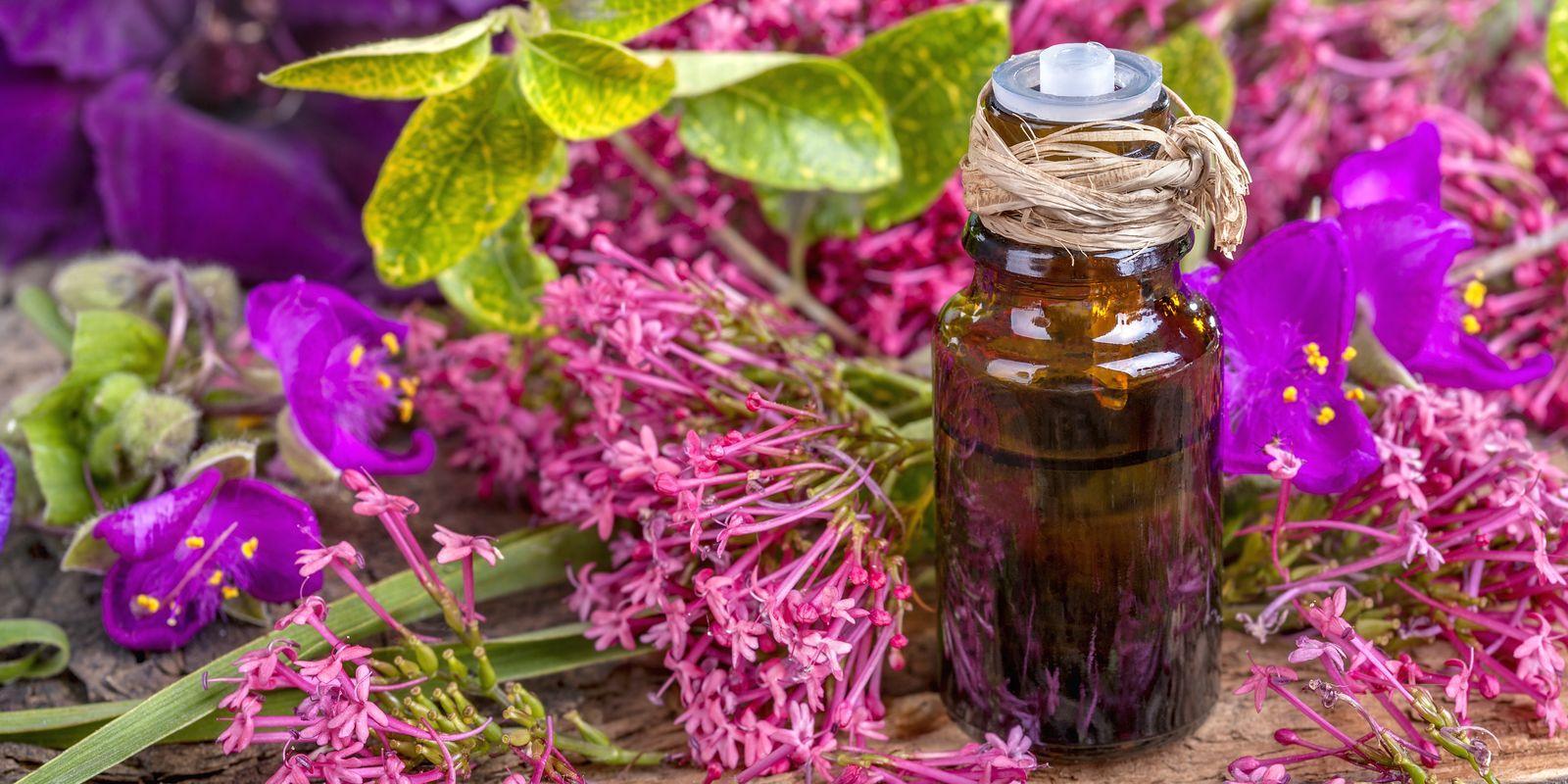 Geránium v kosmetice, aromaterapii a léčitelství