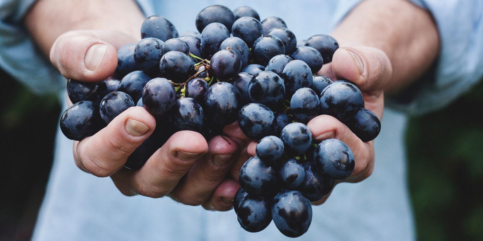 Hroznové víno a jeho úžasné účinky na zdraví
