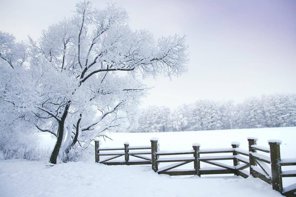 Jak se pořádně zahřát a ve zdraví přečkat zimní počasí