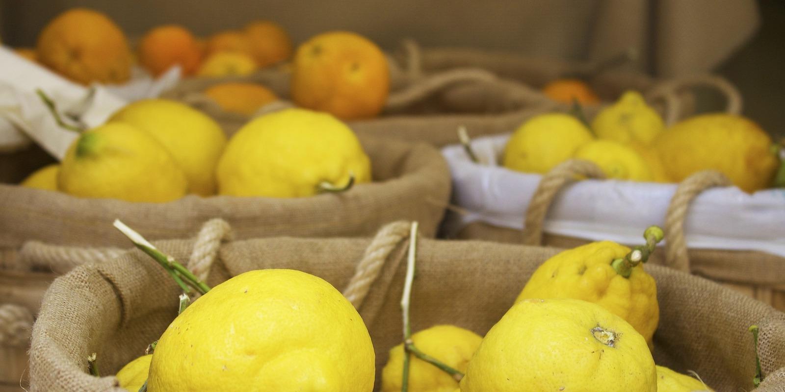 K čemu vlastně slouží citrusy?