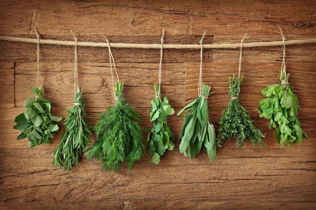 Jaké má rozmarýna léčivé účinky?