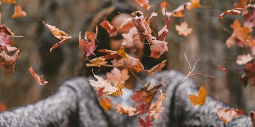 Aromaterapie a pět elementů – Podzim