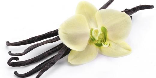 Éterický olej vanilka