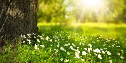 Jak na regeneraci těla i ducha
