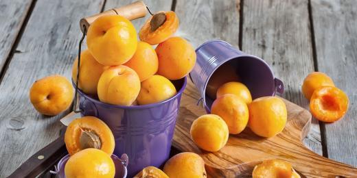 Meruňky - oranžový antioxidační poklad