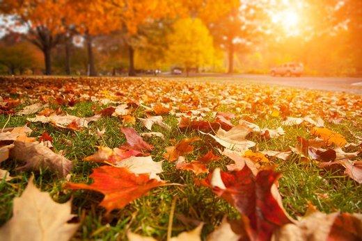 Podzimní nezbytnosti