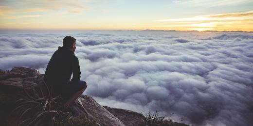 Rozchodnice růžová – přírodní viagra a účinný bojovník proti depresi