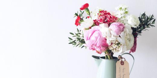 Růže: 5 důvodů, proč si královnu květin zamilujete ještě víc