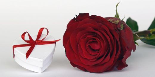 Růže nejen na Valentýna