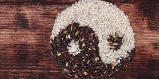 Veganství jako životní filozofie, aneb není to jen o jídle (a kosmetice) - část první