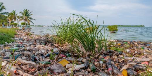 Zero waste domácnost