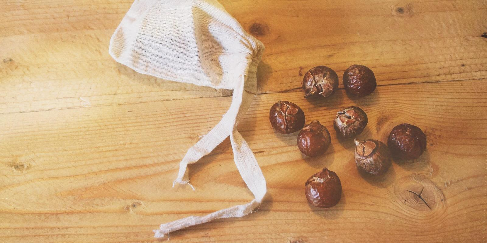 Mýdlové ořechy nejen na praní