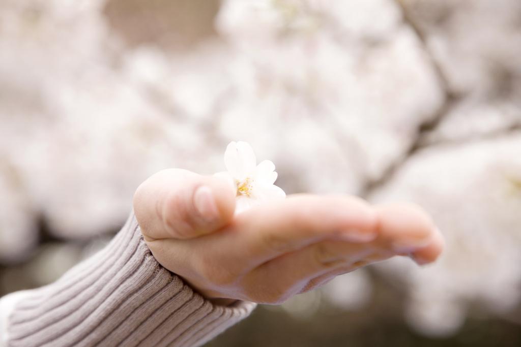 Přírodní krémy na ruce