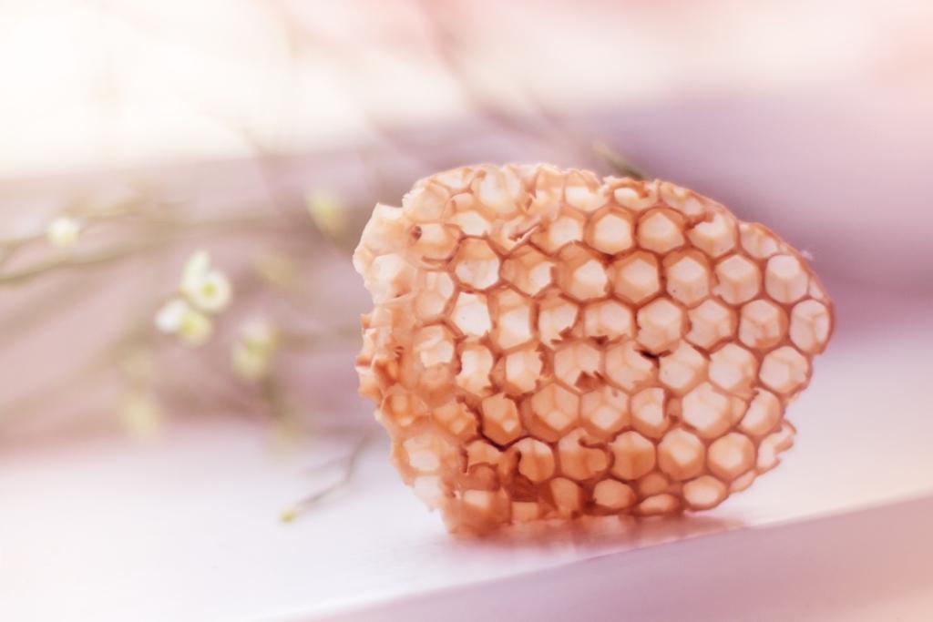 Účinky propolisu
