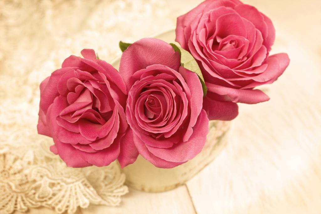 Růžová voda