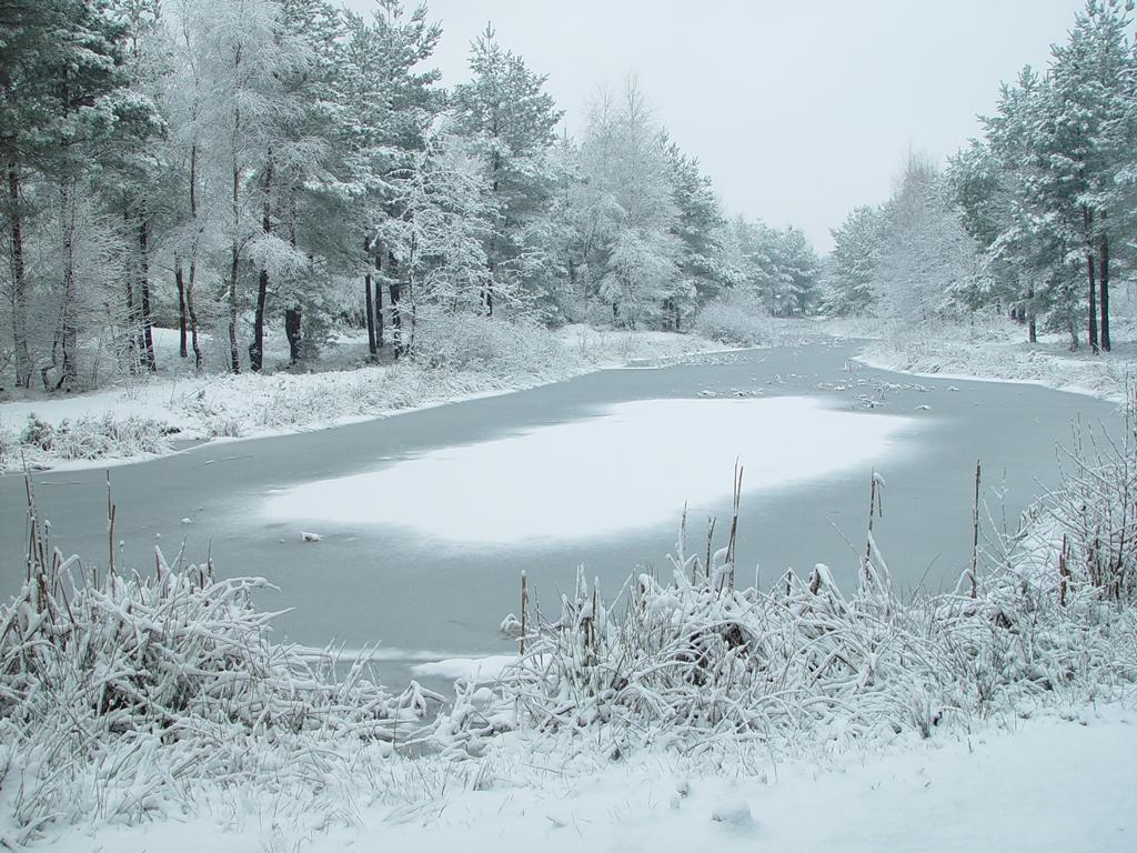 Co Kaphu ještě více ochlazuje?