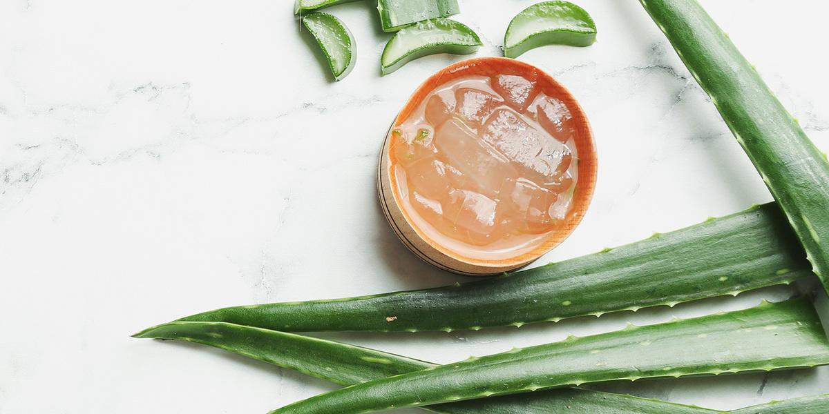 Aloe vera, hydratace, aloe, kostky ledu
