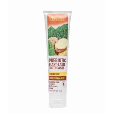 Desert Essence Prebiotická zubní pasta, zázvor a máta 176 g