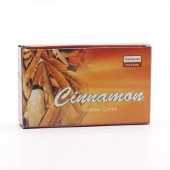 Darshan Vonné jehlánky indické Cinnamon 10 ks