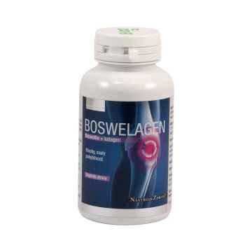 Nástroje Zdraví Boswelagen, kapsle 60 ks