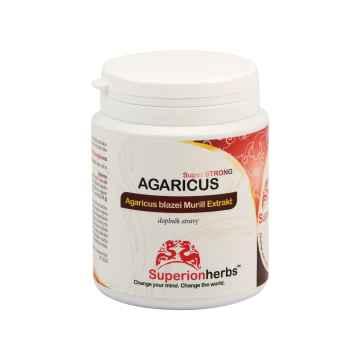 Superionherbs Agaricus Extrakt, kapsle 90 ks