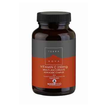 Terranova Health Vitamin C Komplex, 250 mg 50 ks, (kapslí)