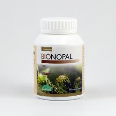 Nástroje Zdraví Nopal bio, kapsle 120 ks