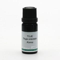 Nobilis Tilia Túje 10 ml