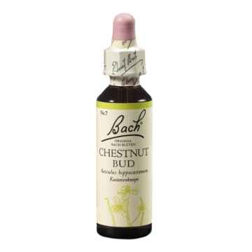 Dr. Bach Esence Chestnut Bud 20 ml
