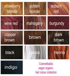 Cosm´etika Barva na vlasy Kaštanově červená 100 g