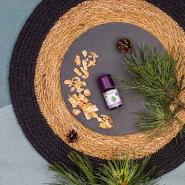 Taoasis Piniový háj, Bio, Demeter 5 ml